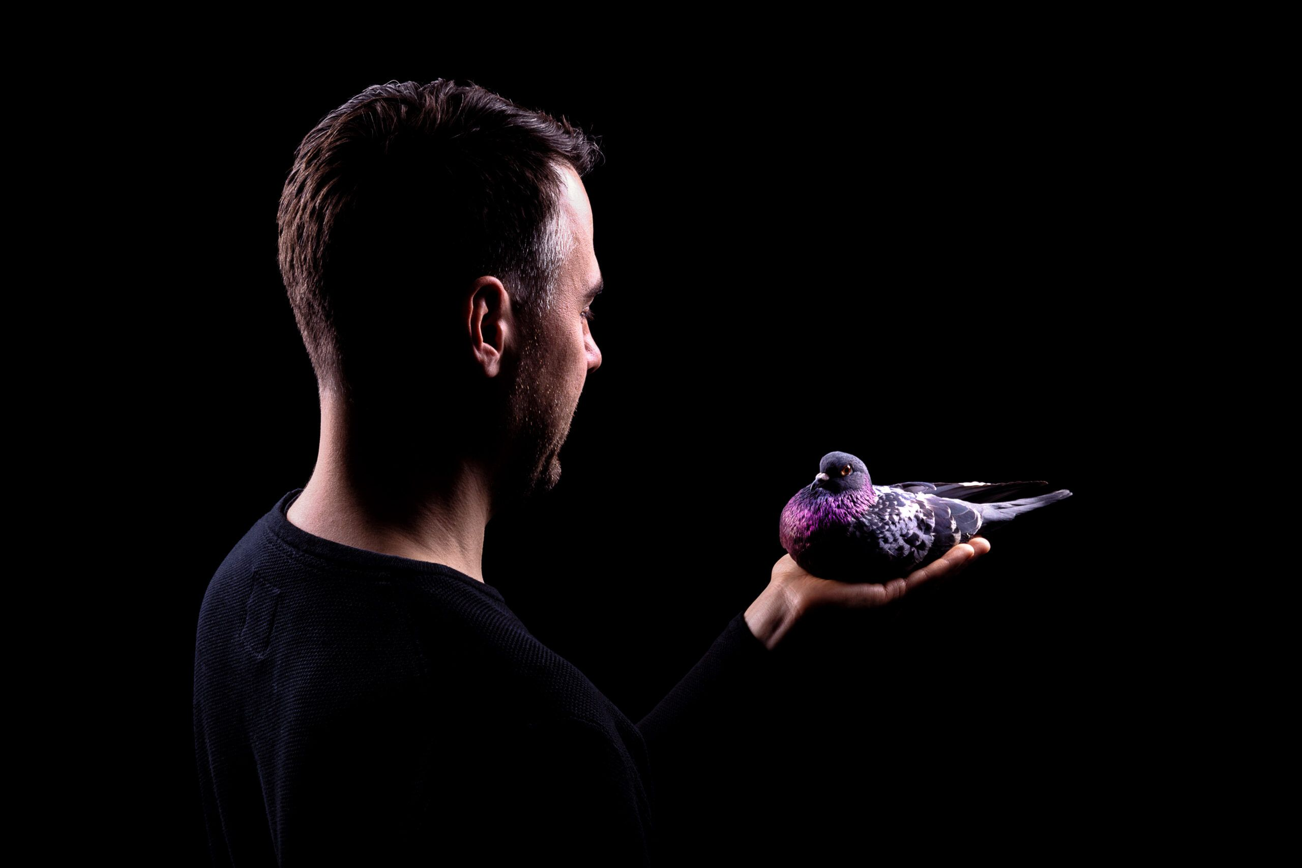 Interview: Stimming on his new album, pigeons, & straying from functionality